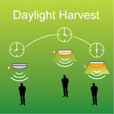 Daylight Harvest Function