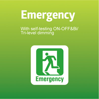 Emergency with self-testing ON-OFF & Bi/ Tri-level dimming Function